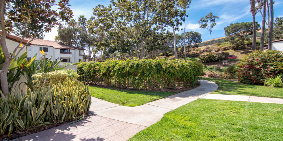 Avana La Jolla Apartments in San Diego, California offers apartments with grassy areas and pathways