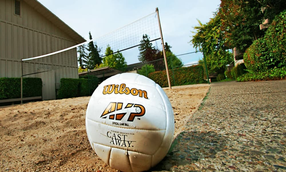 volleyball court at The Shadows Apartments