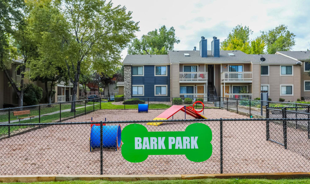 Dog Park at City Center Station Apartments