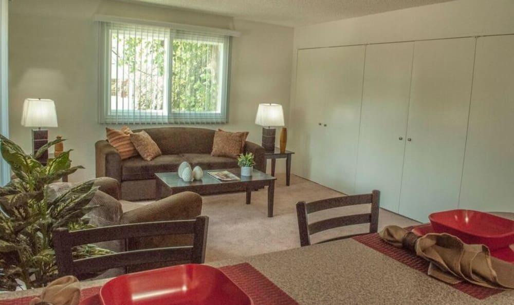 Spacious model living room at The Windsor in Sherman Oaks, California