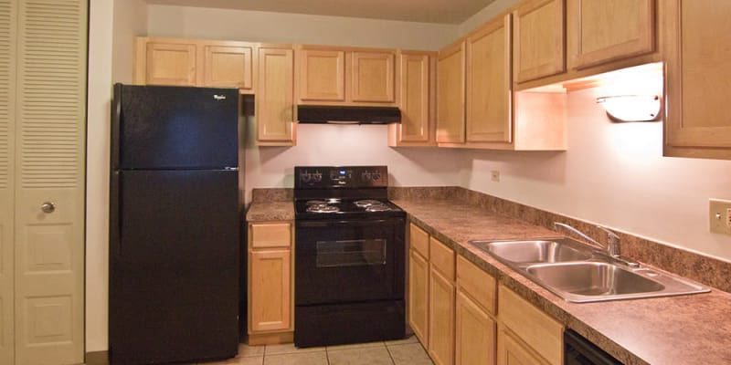 Well-equipped kitchen at Richton Park, Illinois