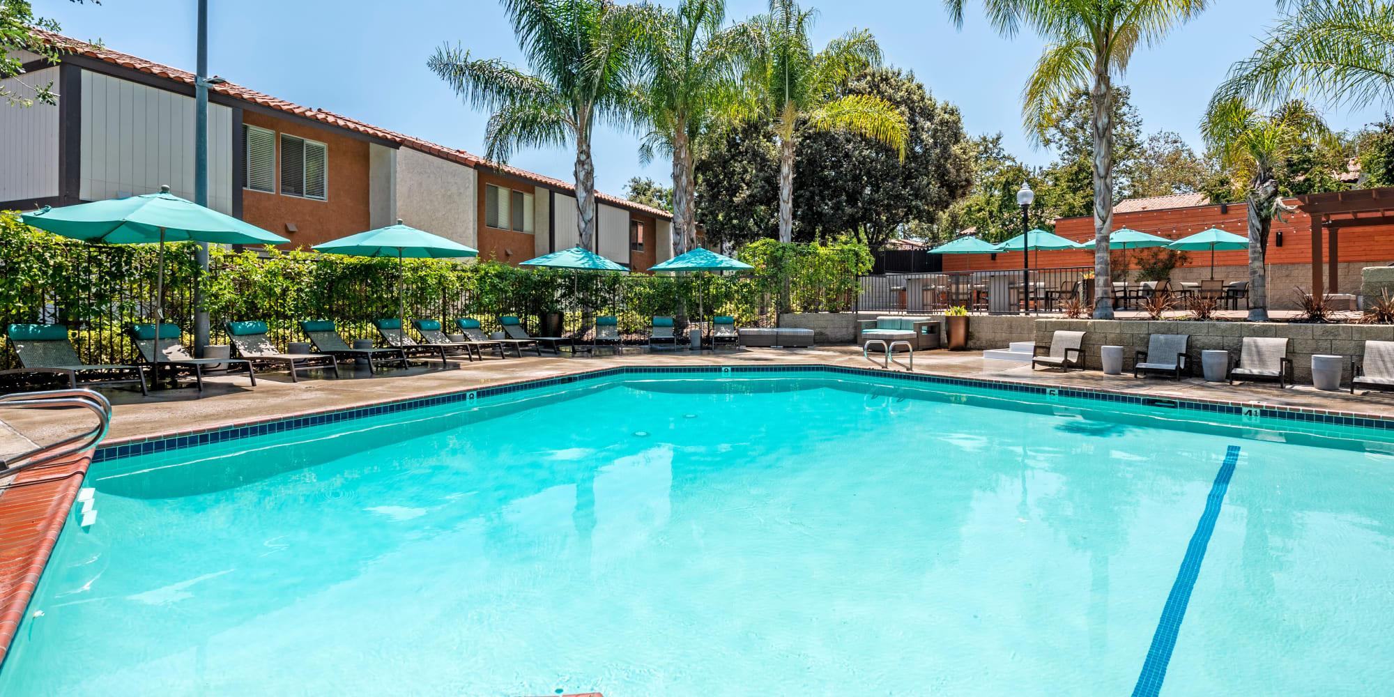 Apartments in Thousand Oaks, California, at Sofi Thousand Oaks