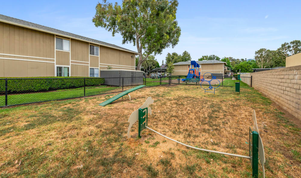 On-site dog park at Country Hills Apartment Homes in Corona, CA