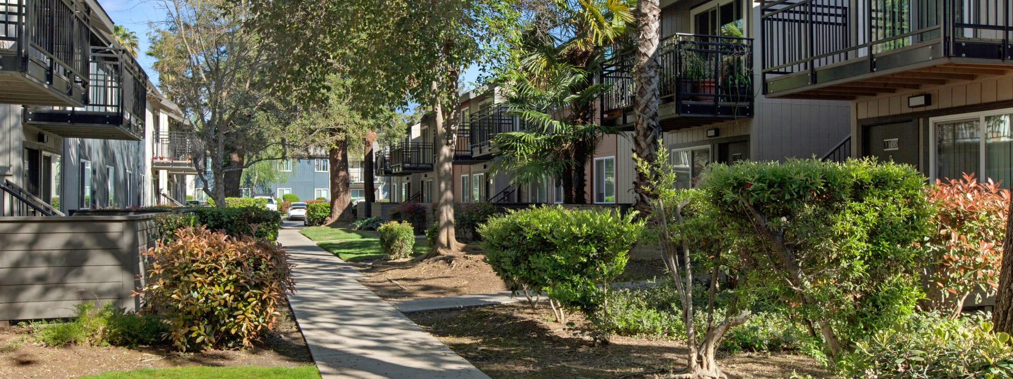 Neighborhood near The Archer in Sacramento, California