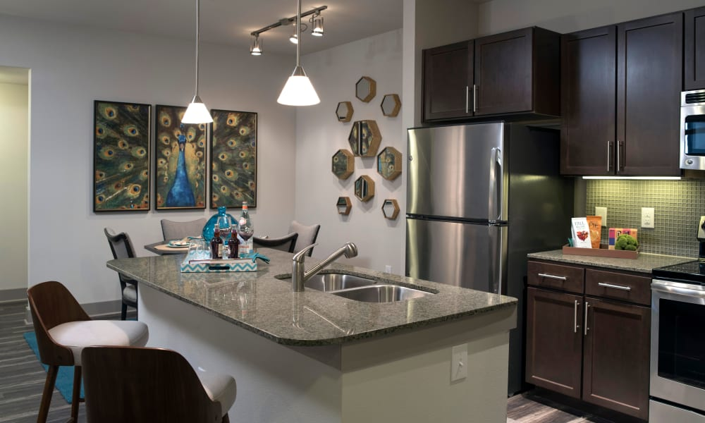 Stainless-steel appliances at Savannah Oaks in San Antonio, Texas