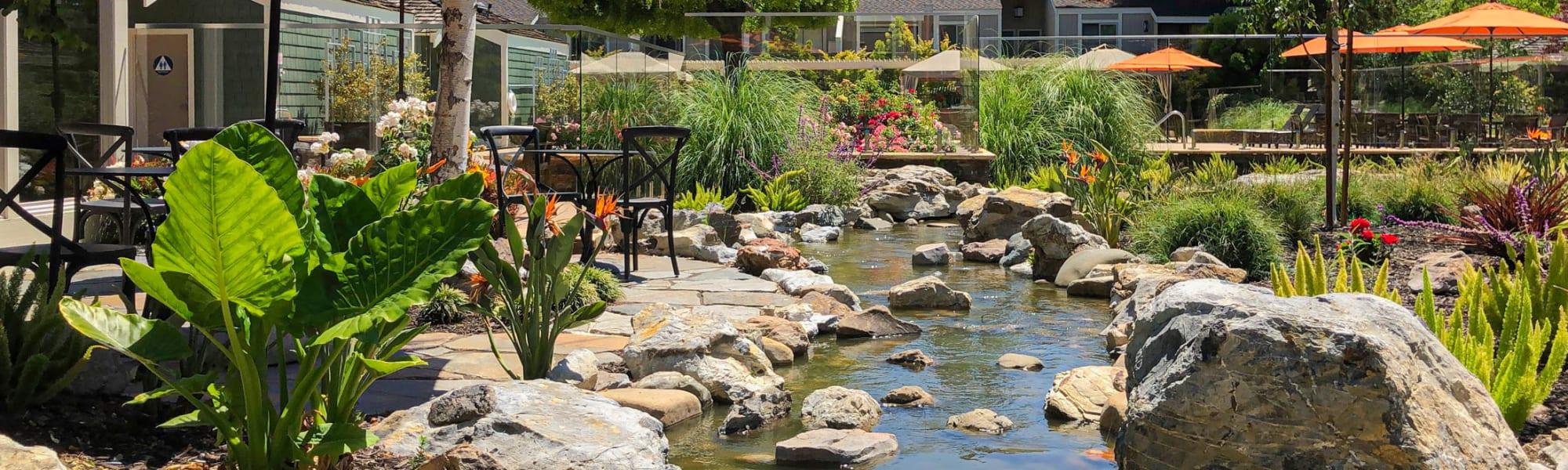 Amenities at Glenbrook Apartments in Cupertino, California