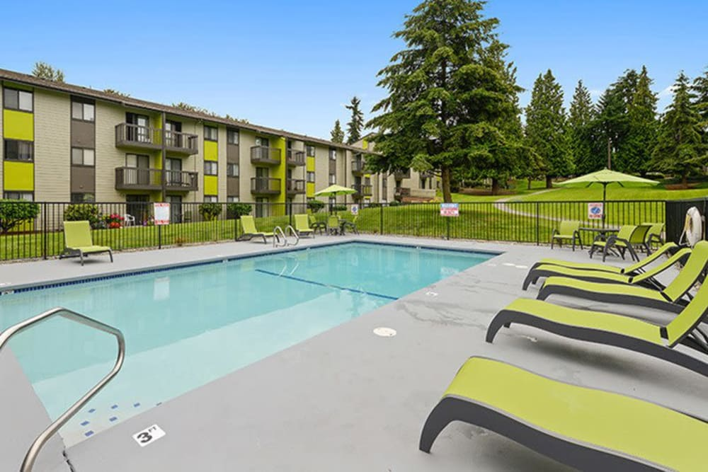 Large swimming pool with lounge chairs at Terra Apartment Homes in Federal Way, Washington