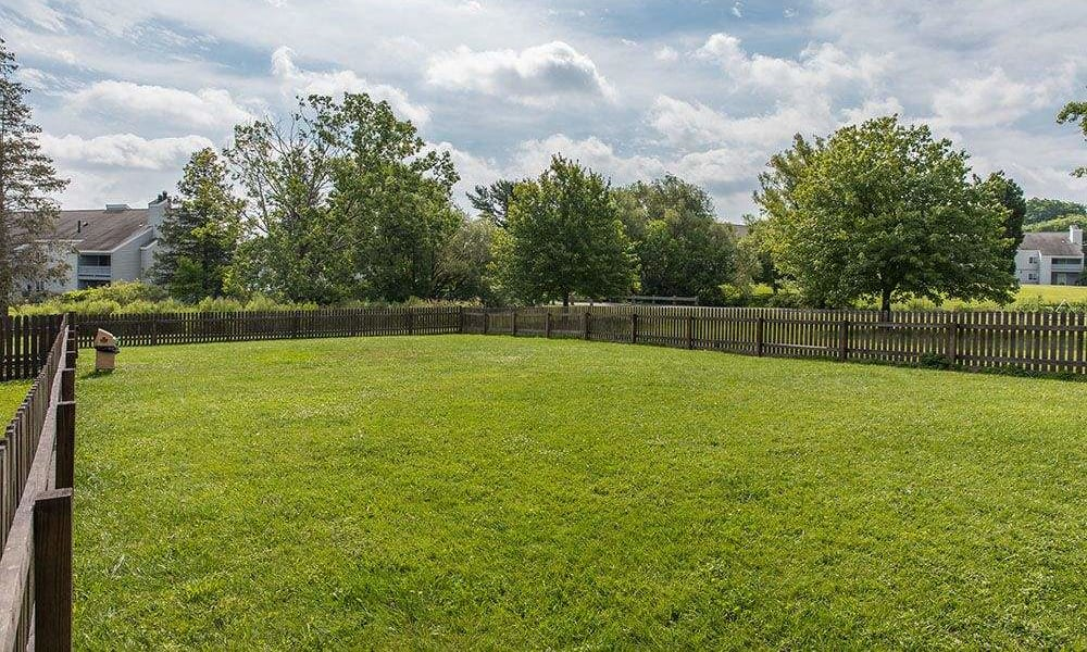 Dog park at The Meadows Apartments in Syracuse, New York