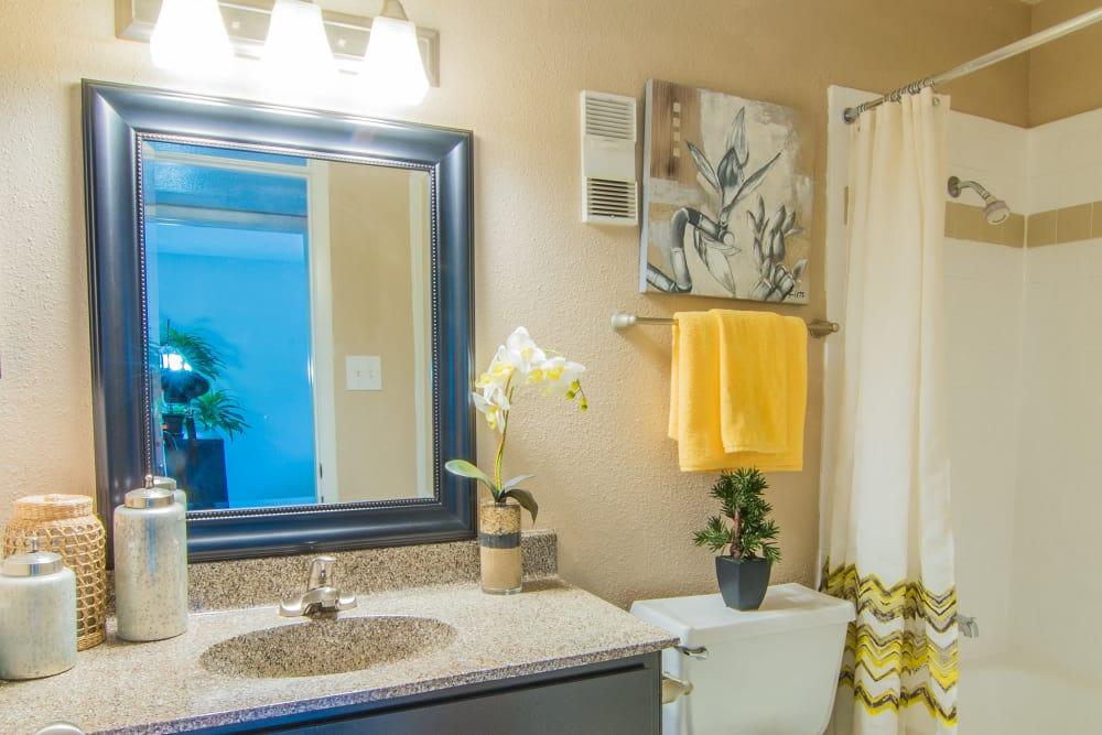 Bathroom at Deerbrook Forest Apartments