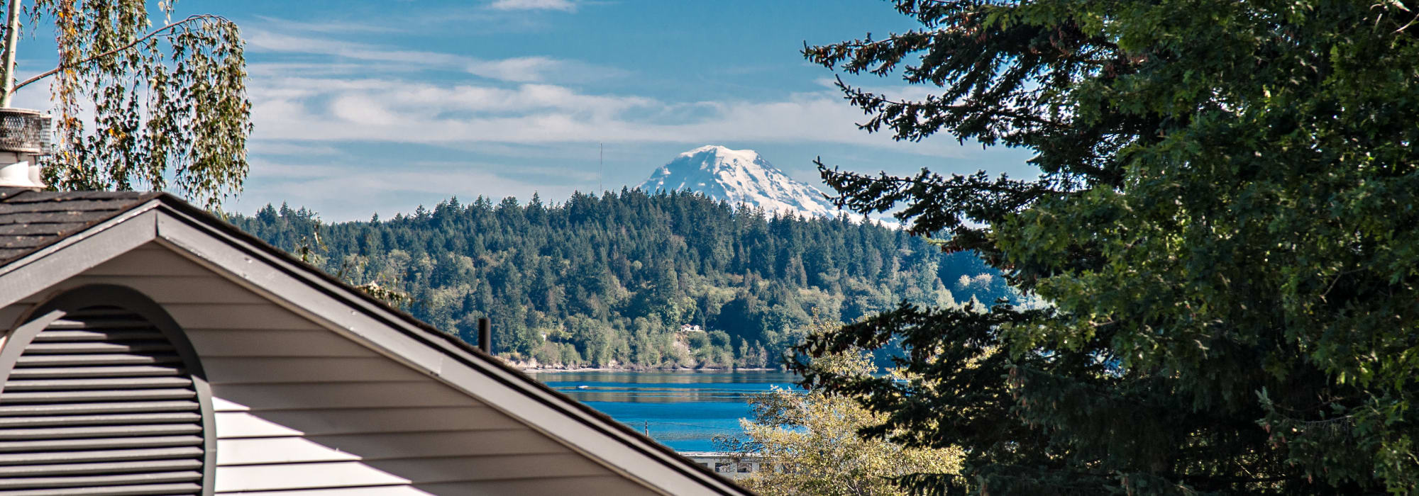 Pet friendly living at Wellington Apartment Homes in Silverdale, Washington