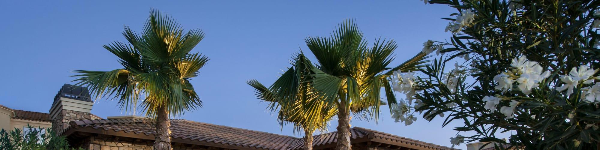 Virtual tour of San Privada in Gilbert, Arizona