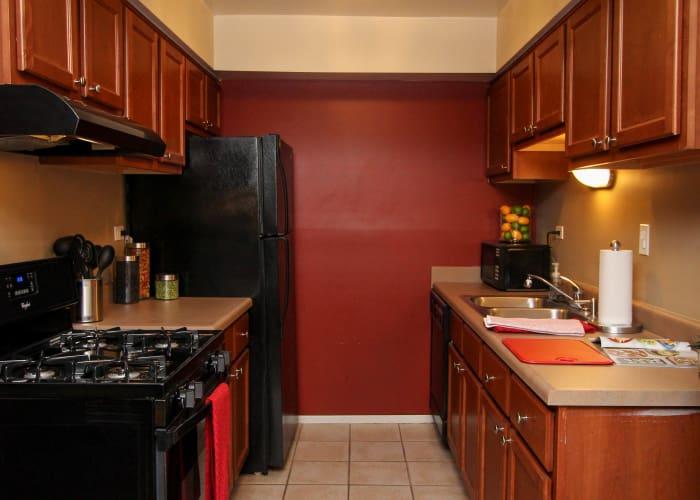 kitchen in Rustic Oaks luxury apartments