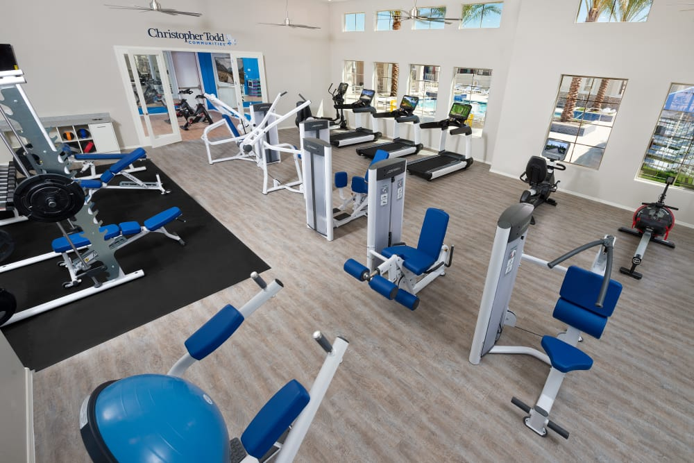 Fitness center with yoga studio at Christopher Todd Communities At Stadium in Glendale, Arizona