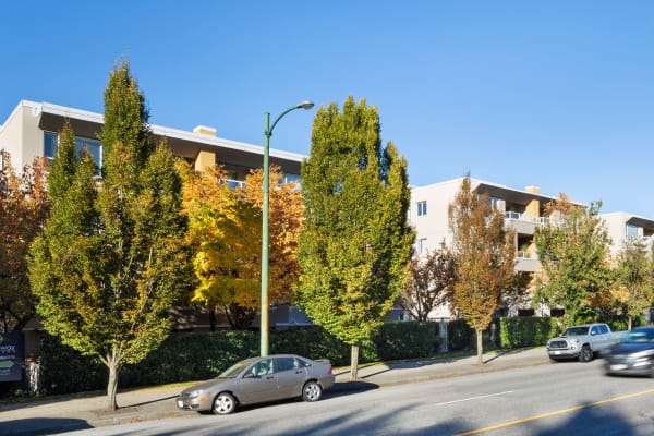 Beautiful trees line the exterior of Larchway Gardens in Vancouver, British Columbia