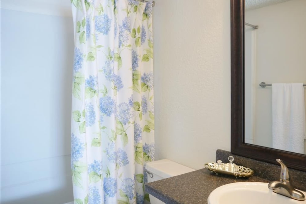 The Park at Ashford offers a beautiful bathroom in Arlington, Texas