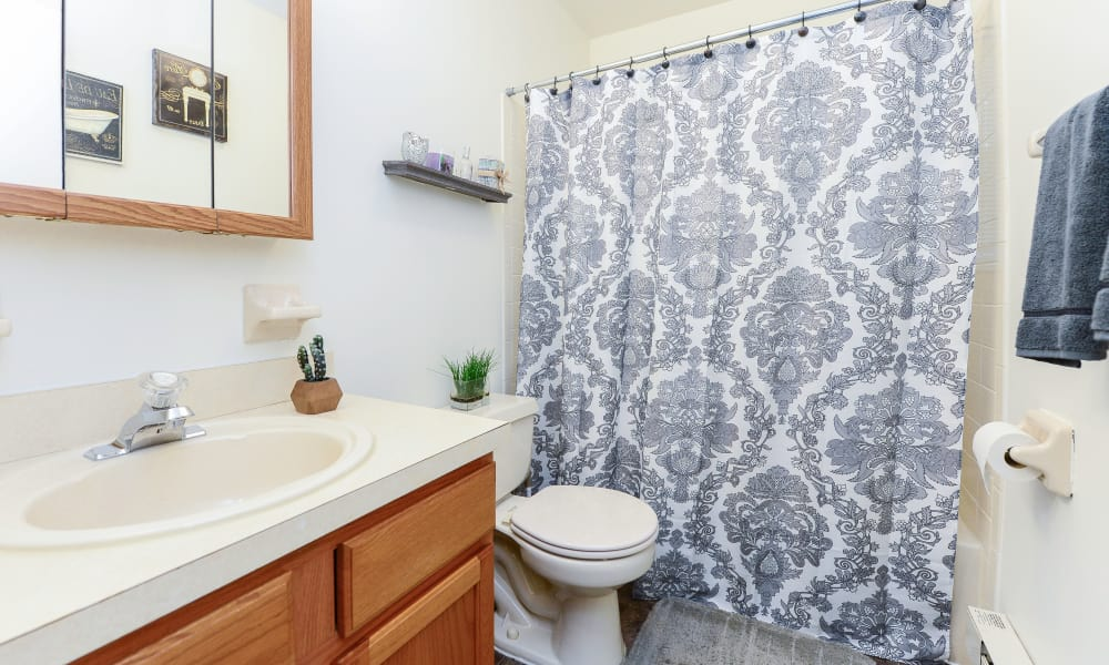 Bathroom at Eatoncrest Apartment Homes in Eatontown, New Jersey