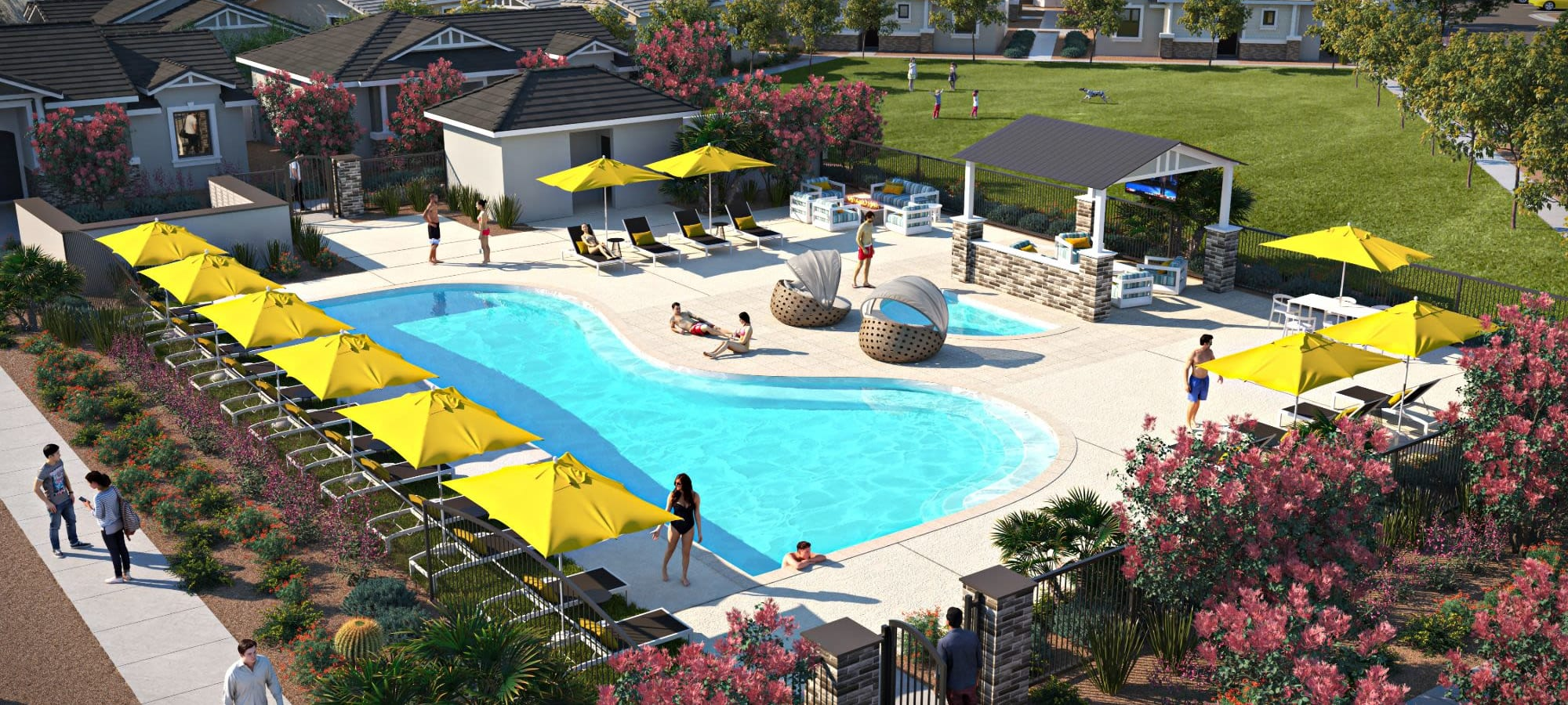 Rendering of resort style swimming pool at TerraLane at South Mountain in Phoenix, Arizona