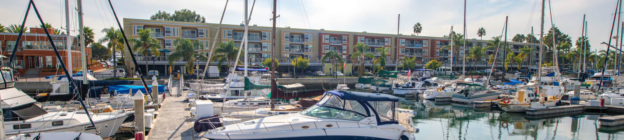Pet friendly Harborside Marina Bay Apartments with ample space for your pets, in Marina del Rey, California