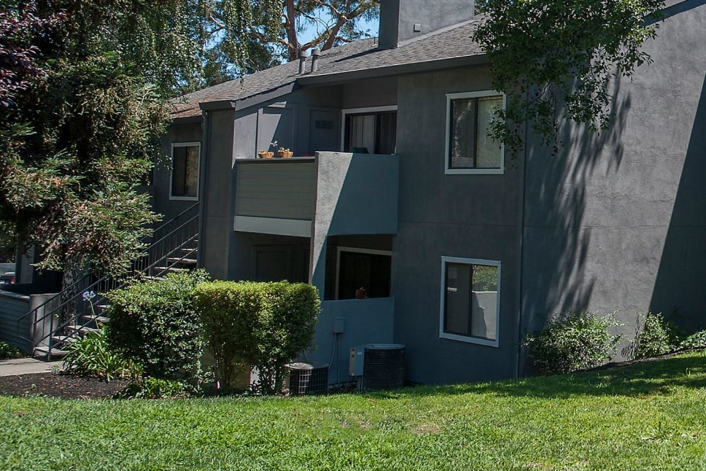 Grey exterior surrounded by plum trees at Plum Tree Apartment Homes in Martinez, California