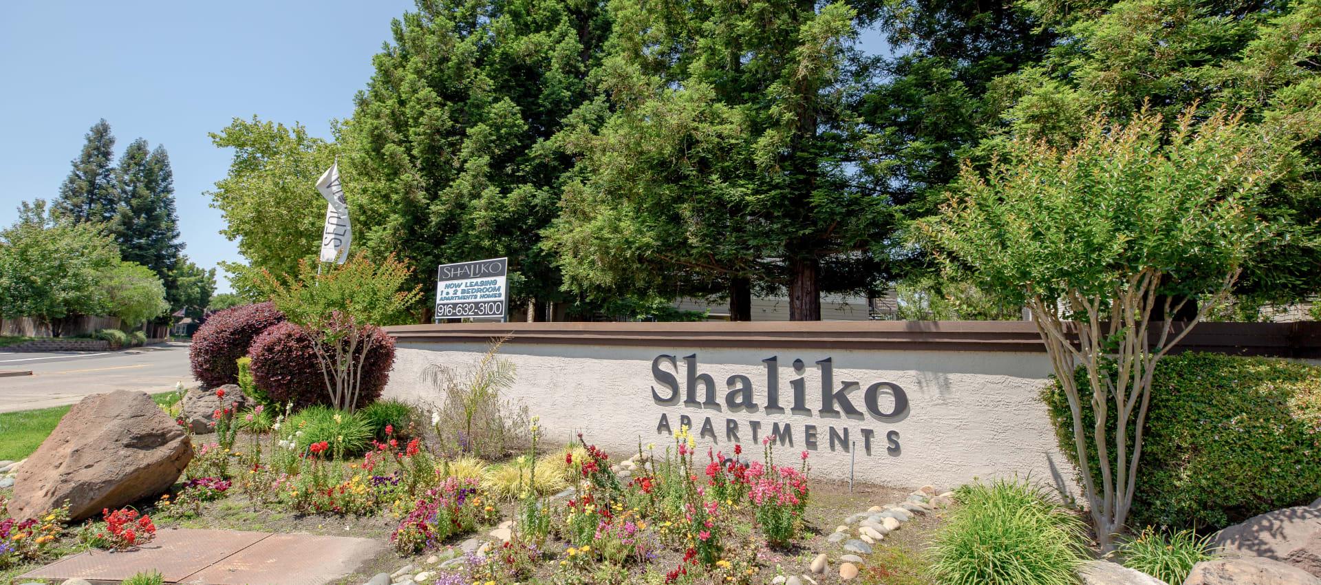 Signage at Shaliko in Rocklin, California.