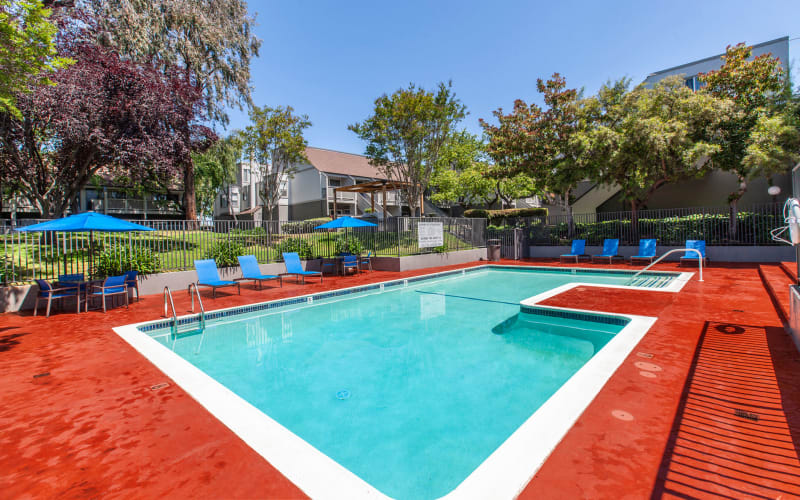 The swimming pool on a sunny day at The Timbers Apartments in Hayward, California