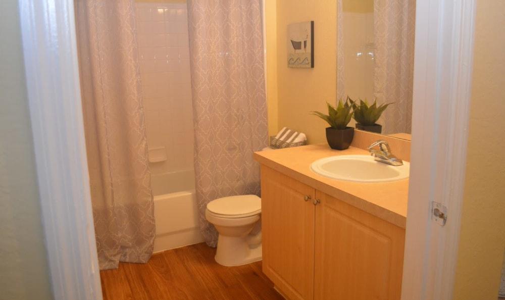 bathroom at Springs at Palma Sola in Bradenton, FL