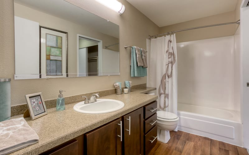 Spacious bathroom at Park South Apartments in Seattle, Washington