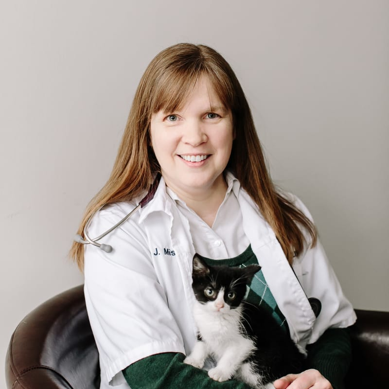 Our Skilled Veterinarians | Brighton-Eggert Animal Clinic