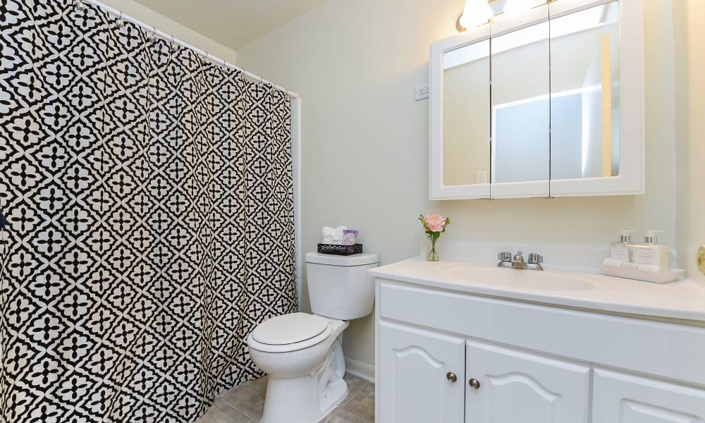 Spacious Bathroom at The Colonials Apartment Homes