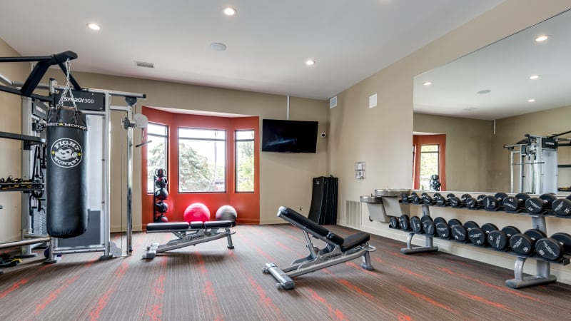 Gym at The Trilogy Apartments