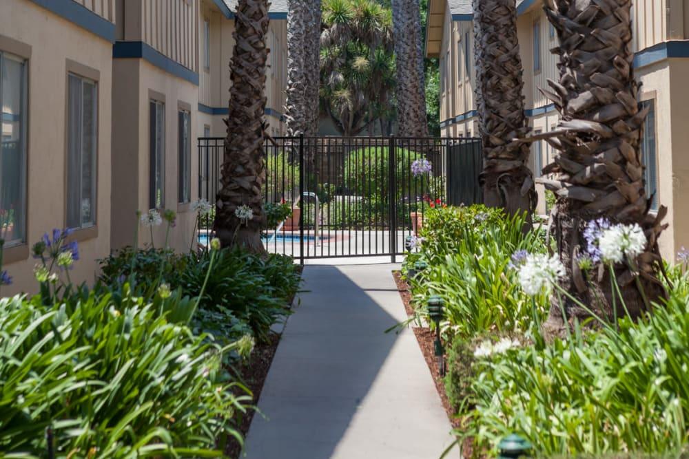 Entrance to Cedartree Apartments' gated swimming pool in Santa Clara, California
