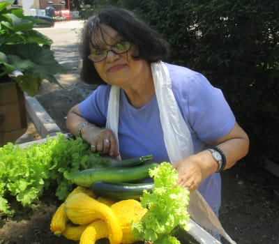 Happy senior woman picking crops at Eastern Star Masonic Retirement Campus in Denver, CO