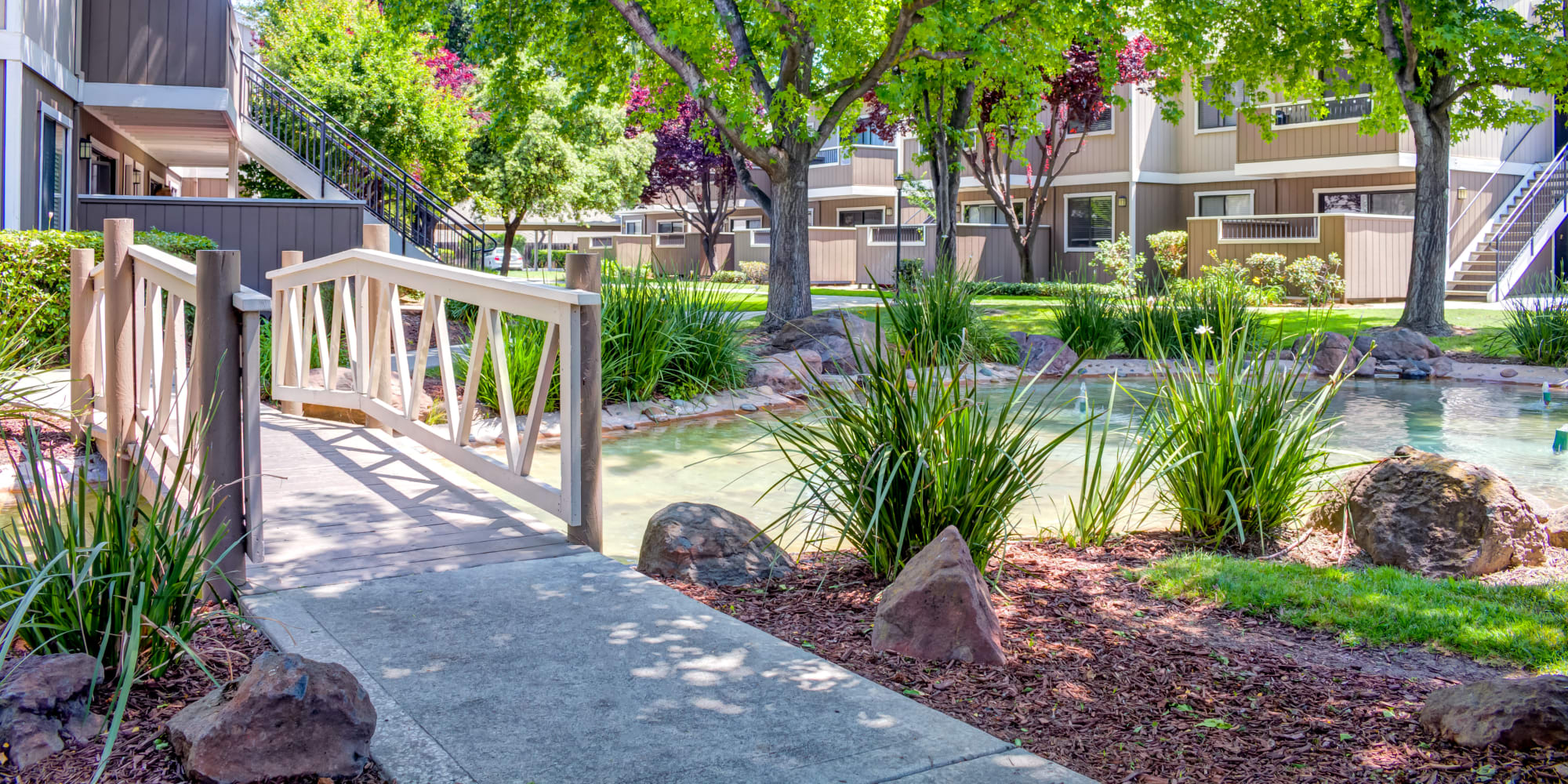 Apartments at Sofi Berryessa in San Jose, California
