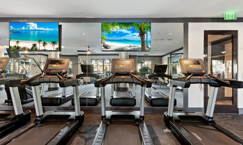 Cardio area of the state of the art fitness center at 6600 Main in Miami Lakes, Florida