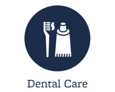 Pet dental care offered at Starch Pet Hospital in Des Moines, Iowa