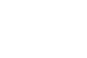 The Patriot Apartments Logo