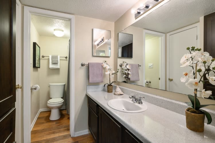 Model bathroom at The Manchester Apartments in Euless, Texas