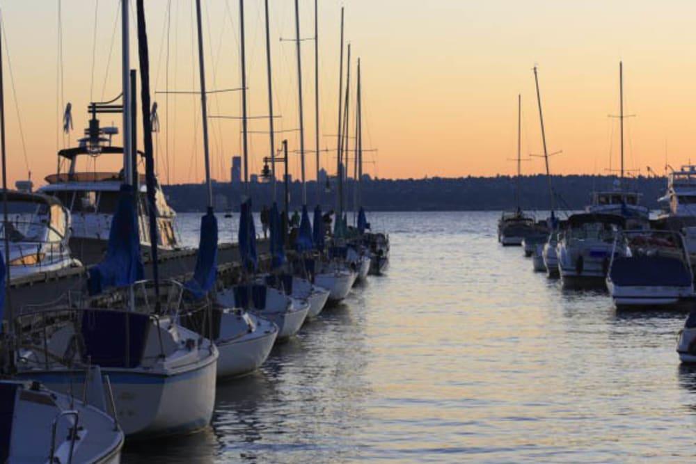 Docks in the neighborhood near Merrill Gardens at Kirkland in Kirkland, Washington