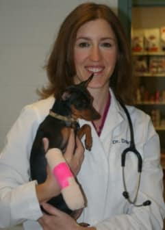 Dr. Brett Wood at Willow Run Veterinary Clinic in Willow Street, Pennsylvania