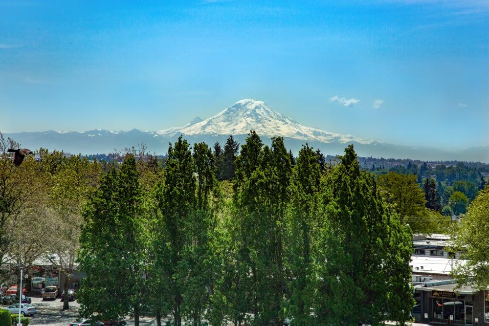 Stunning views of Mount Rainier from The Maverick in Burien, Washington