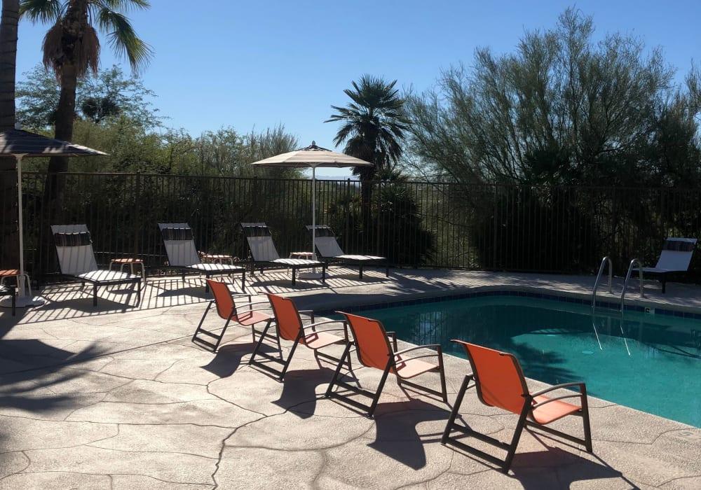 Modern swimming pool at Elevation Apartments in Tucson, Arizona