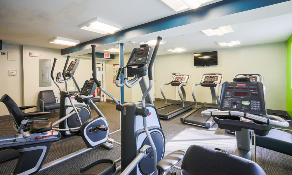 Fitness center with treadmills, seated bikes, and ellipticals at Regency Pointe in Forestville, Maryland