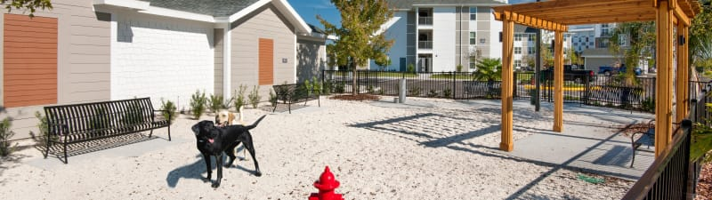 A pet park at Linden Crossroads in Orlando, Florida