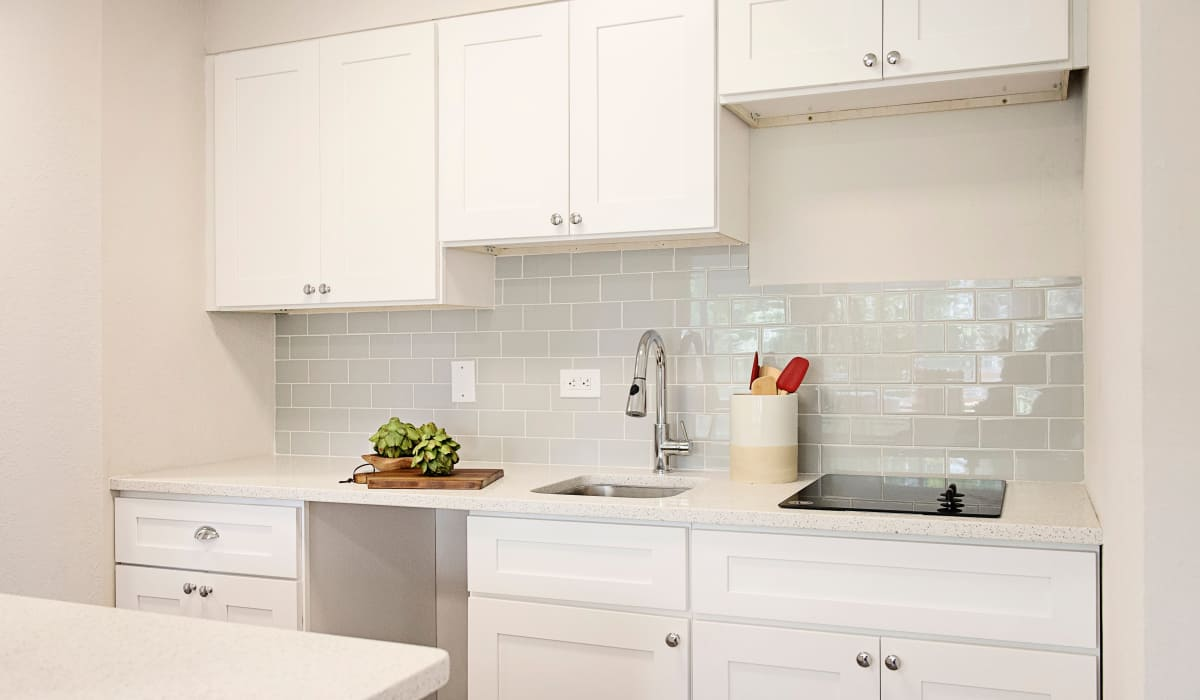Modern kitchen at Our Property in St Petersburg, Florida