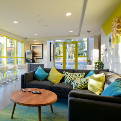 Clubhouse with large windows for lots of natural lighting at Domus on the Boulevard in Mountain View, California
