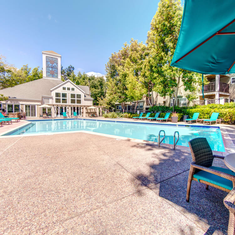 Resort-style swimming pool with shaded seating nearby at Sofi Sunnyvale in Sunnyvale, California