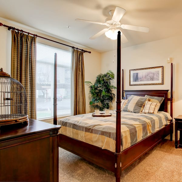Master bedroom with a ceiling fan and plush carpeting at Laguna Creek Apartments in Elk Grove, California