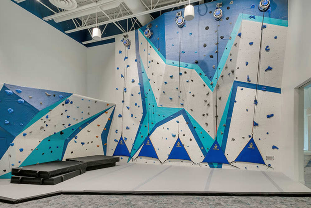Rock climbing walls in Denver, Colorado