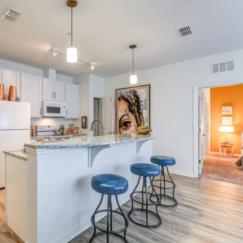 View Lola Apartments virtual tours in Riverview, Florida