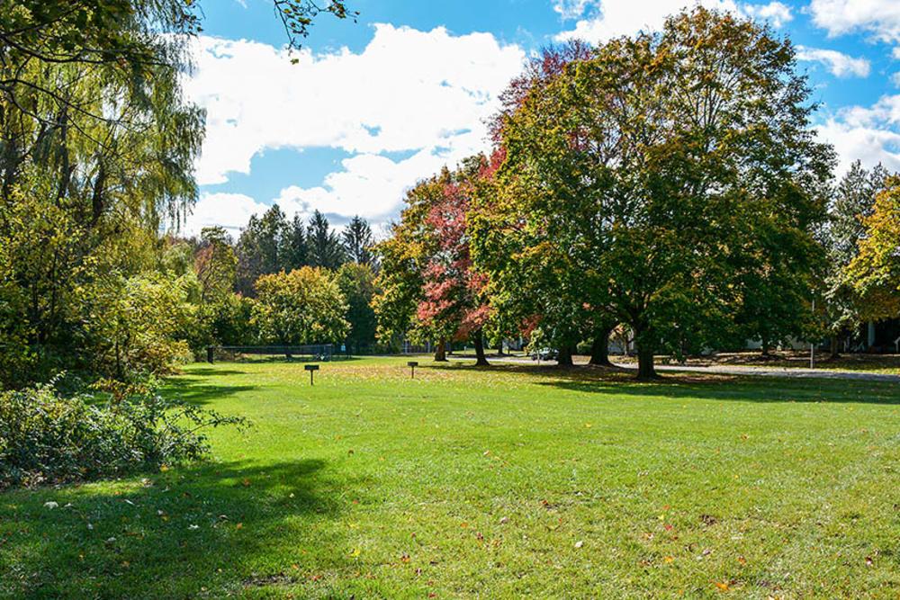 Park At Fox Hill